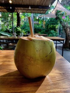 Coconut-Bali-225x300 Yoga Teacher Training Bali