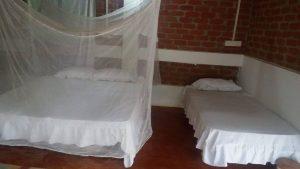 Beach-and-Hills-Yoga-Retreat-Twin-Sharing-Room-Goa-300x169 Yoga Retreat Goa